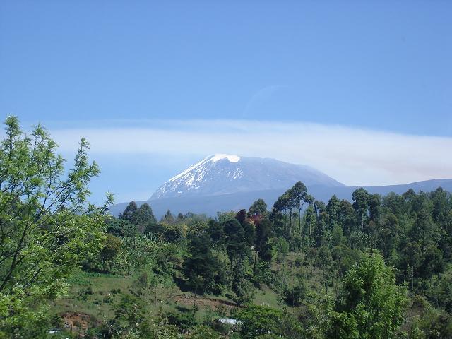 http://www.toczek.com.br/imagens/mini-kilimanjaro.jpg